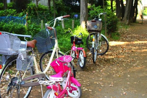 自転車をどこで買うか