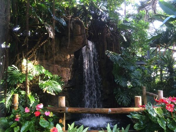 アロハガーデンたてやま植物園