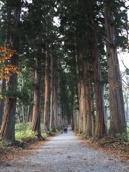 戸隠神社の奥社