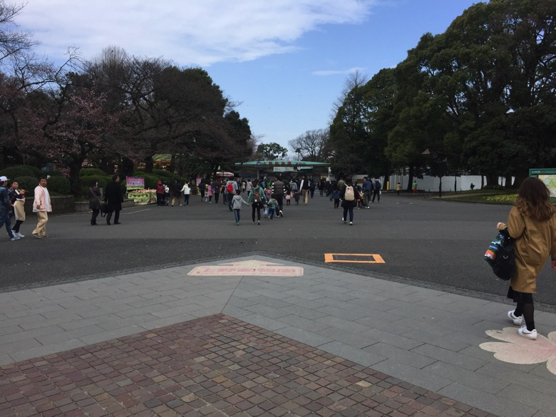 上野動物園 入園料無料の日