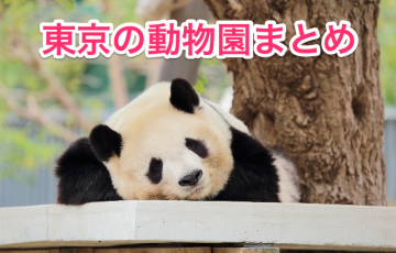 tokyo-zoo.png