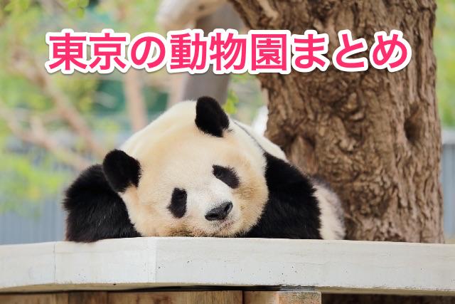 Tokyo zoo