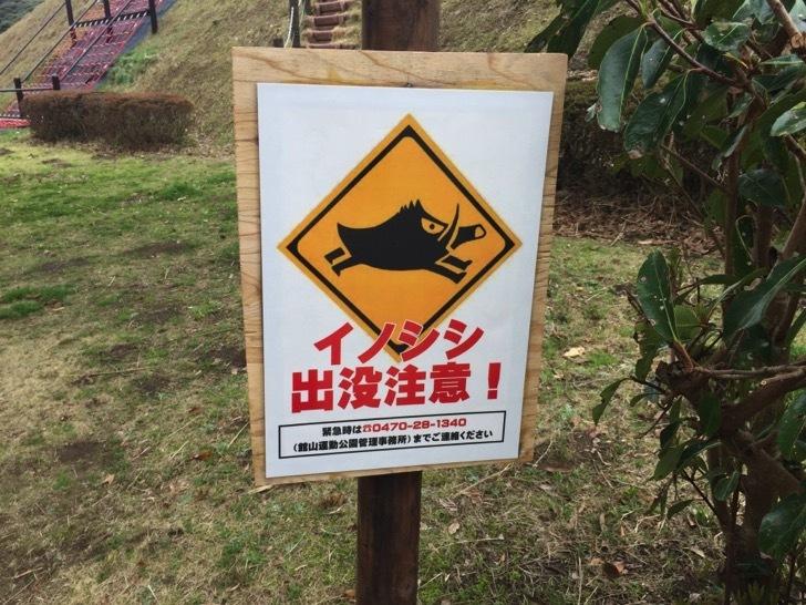 館山運動公園の遊戯広場
